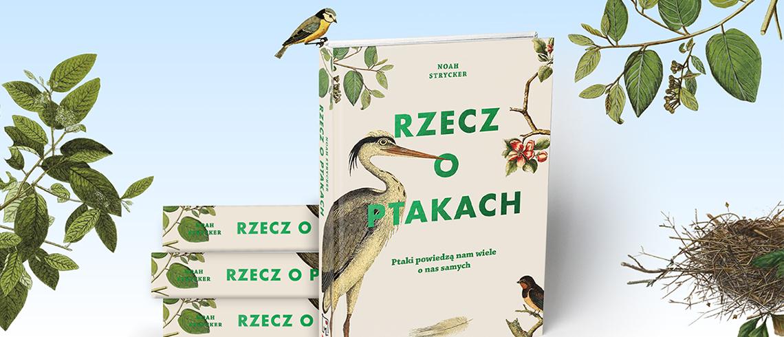 Rzecz O Ptakach O Miłości W świecie Albatrosów